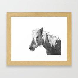 Horse Print | Icelandic Rockstar Horse Framed Art Print