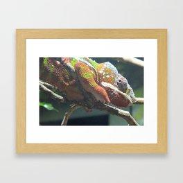 Color shift Framed Art Print