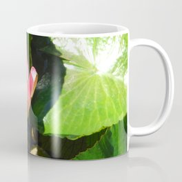 Hanalei Lotus, by Mandy Ramsey, Haines, AK Coffee Mug