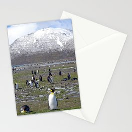King Penguin Colony Stationery Cards