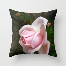 Blooming Light Pink Rose with Water Drops Throw Pillow