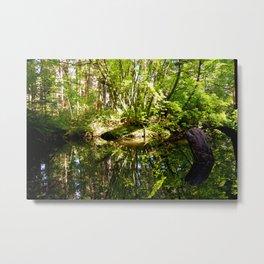 Natural Mirror Metal Print