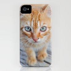 Kitty Cat iPhone (4, 4s) Slim Case