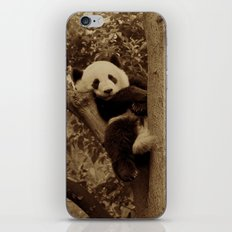 I love pandas!  iPhone & iPod Skin