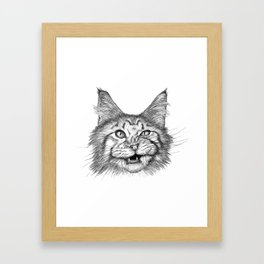 Naughty Cat Framed Art Print