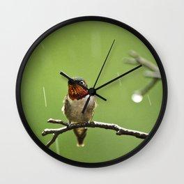 Hummingbird XIII Wall Clock