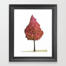 Little Red Tree Framed Art Print