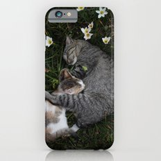 Sleep [A CAT AND A KITTEN] iPhone 6s Slim Case