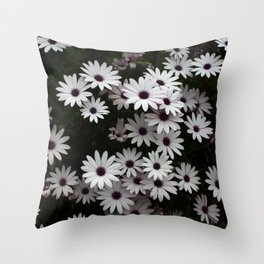 White African Daisies In A Flower Bed Throw Pillow