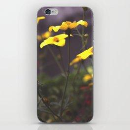 Nature - Wild Yellow iPhone Skin