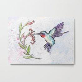 Winsome Hummingbird Metal Print