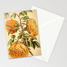 Fortunes Double Yellow rose Stationery Cards