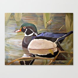 Wood Duck Water Foul Acrylic Painting Canvas Print