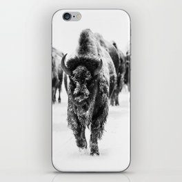 Bisons, black and white iPhone Skin