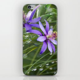 Meadow Dew iPhone Skin