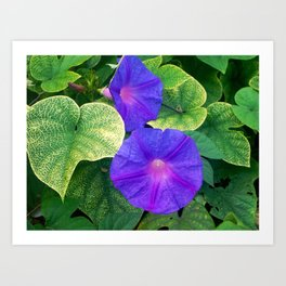 The nature is colorful Art Print
