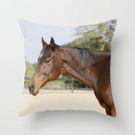 Gulliver Throw Pillow