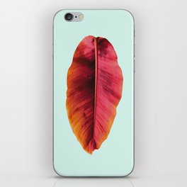 Banana Leaf iPhone Skin