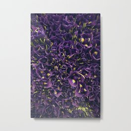 Flower Market 2 - Purple Iris Metal Print