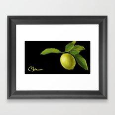 Lemon on Black DP150415a Framed Art Print