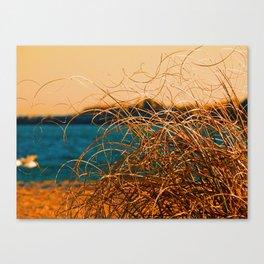 GrassyWaves Canvas Print