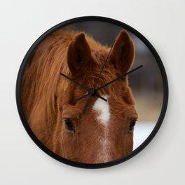 Red - The Auburn Horse Wall Clock