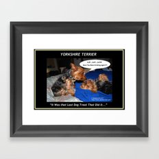 Yorkshire Terrier - Have You Been Drinking Again Framed Art Print