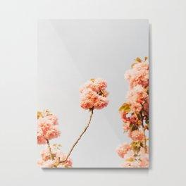 Pillars Of Pastel Pink Flowers Romantic Vintage Florals Metal Print