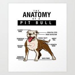 Dog Anatomy OF Pitbull Art Print