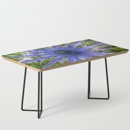 A thistle with style Coffee Table