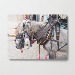 Bali horse Metal Print