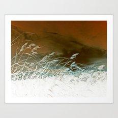 Silver Weeds Art Print