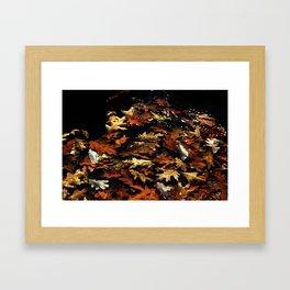 Fall Leaves, 2011 Framed Art Print