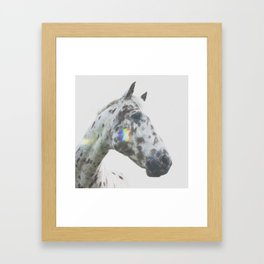 THE SPOTTED HORSE Framed Art Print