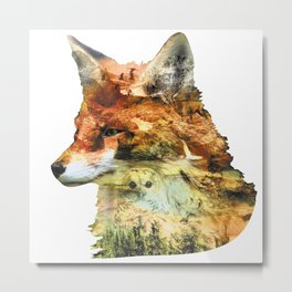 Wild Fox Nation Metal Print