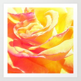 Love and Peace Pastel Rose Art Print
