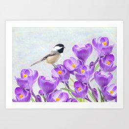 Chickadee and Purple Crocus Art Print