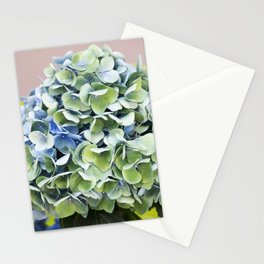 Longwood Gardens - Spring Series 255 Stationery Cards