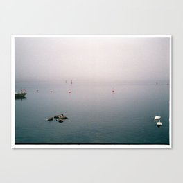 Swan family in misty harbour Canvas Print