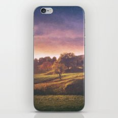 After the Storm iPhone & iPod Skin