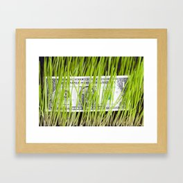 green grass and dollar Framed Art Print