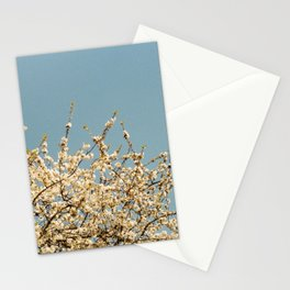 Pear Tree (One) Stationery Cards