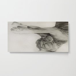 Pencil drawing kitten sphinx, graphic art Metal Print
