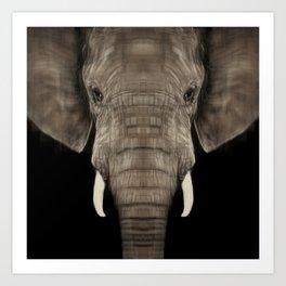 Elephant Sym Art Print