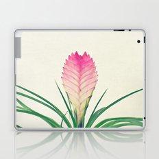 Bromelia II Laptop & iPad Skin
