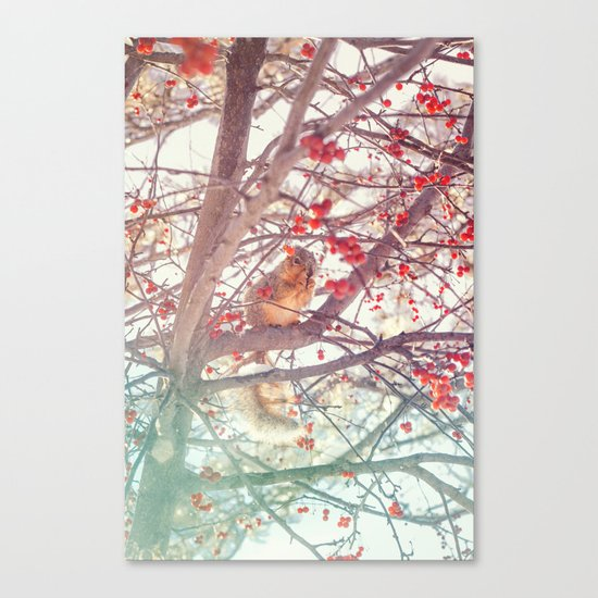 Squirrel Meal on a Cherry Tree Canvas Print