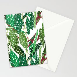 Polka Dot Begonia Leaves in White Stationery Cards
