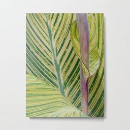 New leaf Metal Print