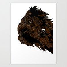 Flatcoated Art Print