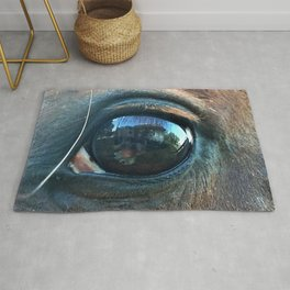 Reflections in the Eye of the Horse Rug